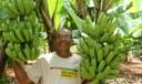 Ruraltins inclui mais 500 produtores rurais no Programa de Aquisição de Alimentos