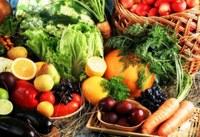 """Secretaria Estadual de Saúde promove oficinas em alusão ao """"Dia Mundial de Alimentação"""""""